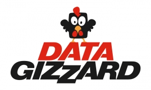 Data-Gizzard-LOGO-WEB